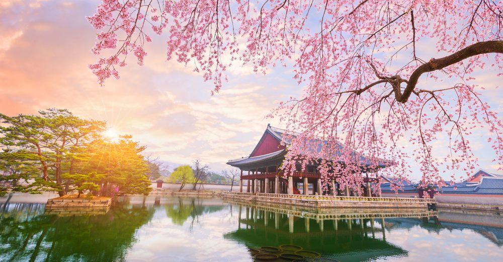 Paket Tour Korea Selatan 2021 – 2022